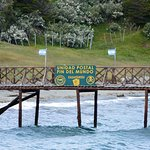 Foto de Parque Nacional Tierra del Fuego
