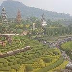 """Фотография Тропический ботанический сад """"Нонг Нуч"""""""