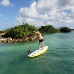 Aruba Surf & Paddle Schoolの写真