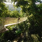 Photo de Jardin de Balata
