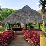 One of the resting places inside Padmapuram Garden