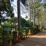 Way to Toy Train facility at the Padmapuram Garden