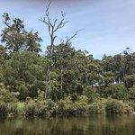 The beautiful Margaret River