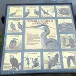 Cowichan Estuary Nature Centre 사진