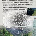 白楊步道照片
