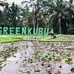 Photo of GreenKubu Cafe