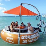 Rent your own boat and get out there by yourself Octopus Aruba