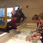 Foto de Explora Science Center and Children's Museum of Albuquerque