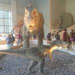 國立自然科學博物館照片