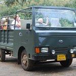 Safari Bus, Ranthambore