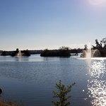 Lakes Regional Park의 사진