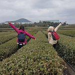 Photo de Jeju Day Tour