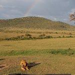 Evening Gamedrive Maasai Mara