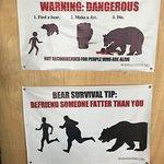 Photo of The Three Bears