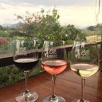Foto de PB Valley Khao Yai Winery