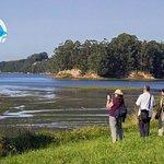 Participantes en la ruta a pie de la Mies al Pico, se interpreta la campiña atlantica y la marisma del Conde. territorio del Aguila pescadora en la Bahia de Santander