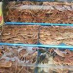 Foto Jagalchi Market