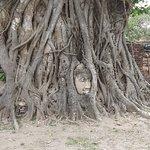瑪哈泰寺照片