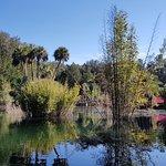 Cedar Lakes Woods And Gardens صورة فوتوغرافية