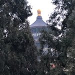 Main Temple through the trees