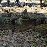 앙코르 유적 공원의 사진