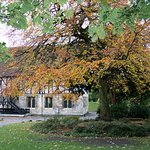 Foto de Museum Gardens