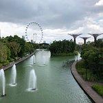 新加坡濱海灣花園照片