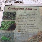Craigowerの写真