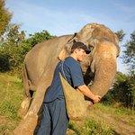 Photo of Maerim Elephant Sanctuary