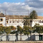 Foto van Plaza de Toros de la Maestranza