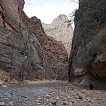 The view upstream toward the narrows.