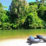 Rio on Diego: Durante el recorrido podrás observar los micos aulladores, variedad de aves, mariposas y hasta los picos nevados! Luego atracaremos en la playa, virgen y poco explorada de gran belleza escénica y natural.