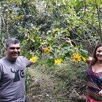 visitantes que descubren en las flores plantas medicinales...descubrimientos botánicos para ellos.