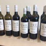 some of the wines tasted...