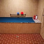 Biggest and best table shower in Gainesville. Includes hair shampoo. 8ft long shower table!