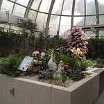 Inside a botanical dome.