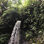 Kuber Bali - Jungle Club and Adventure Resmi