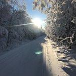 Vinter 2019-01-29