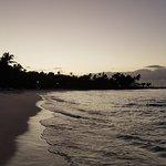 Viva Wyndham Dominicus Beach - An All-Inclusive Resort
