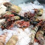 shrimp jumpo