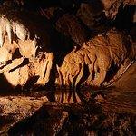Kents Cavern Grottes Préhistoriques