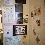 Photo de The Starfish Bakery & Cafe