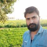 Farms are wearing green saree...😋😎