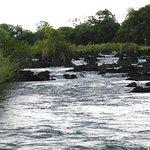 Divava Okavango Lodge & Spa – fénykép