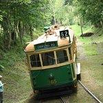 Historische Straßenbahn aus Melbourne im Straßenbahnmuseum Skjoldenæsholm in Dänemark, Insel Seeland.