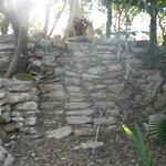 Landscape - Sandos Caracol Eco Resort Photo