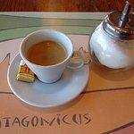 Foto di Patagonicus