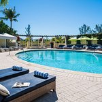 Palm Terrace Pool