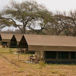 Our Serengeti Tented Camp