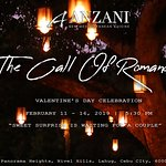 """Valentine's Day """"The Call Of Romance"""""""